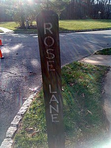 Rose Lane in Old Bridge