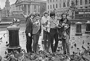 The American band The Byrds from left to right, Jim (Roger) McGuinn, Chris Hillman, Mike Clarke, Gene Clark and Dave Crosby