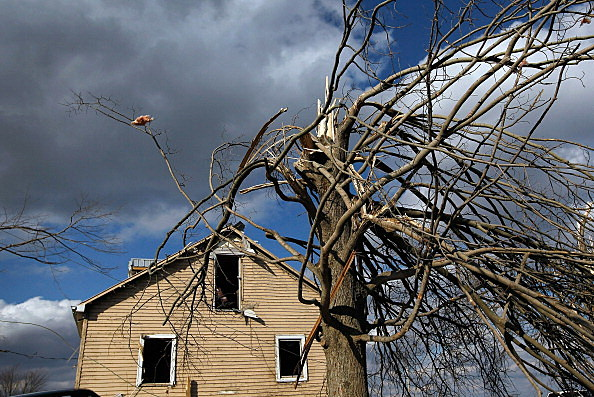 A damaged tree stands in front of a home that was hit after a tornado passed through Chelsea, Indiana.
