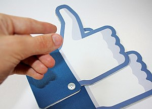 Facebook Password Privacy (Flickr: GOIABA)