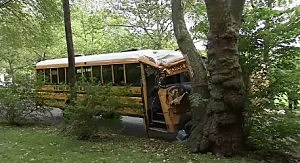 School bus crash in Princeton