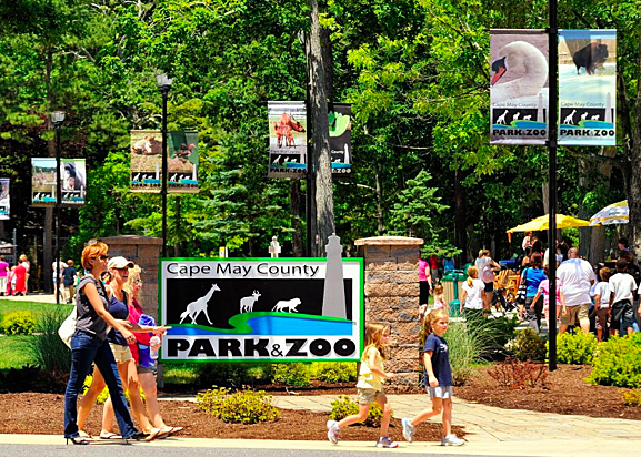 Nj Gas Prices >> Jersey Shore Guide to Zoos and Aquariums for Kids