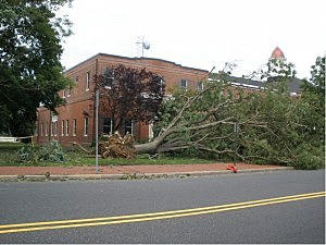 Damage in front of old courthouse in Mays Landing
