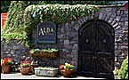 Alba Vineyards
