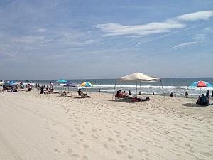 Beach at Beach Haven