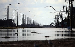 Birds fly above flooding and damage from Hurricane Isaac  in Plaquemines Parish, Louisiana