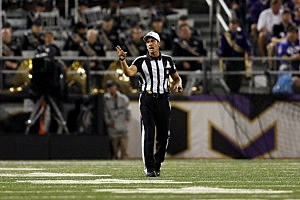 Referee Gene Steratore on the field during the Cleveland Browns -Baltimore Ravens matchup in Baltimore.