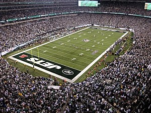 Image result for turf pics at metlife stadium