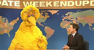 Big Bird appears on Saturday Night Live