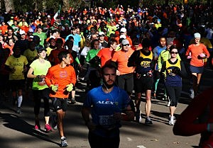 Large groups of joggers run through Centeral Park on Sunday, the day the NY Marathon was to be held.