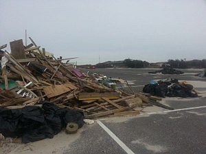 Debris at Island Beach State Park