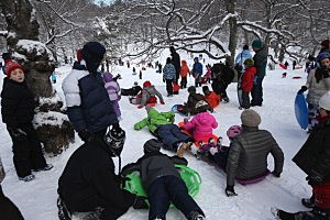 Children sled in Central Park