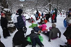 Children sled in Central Park
