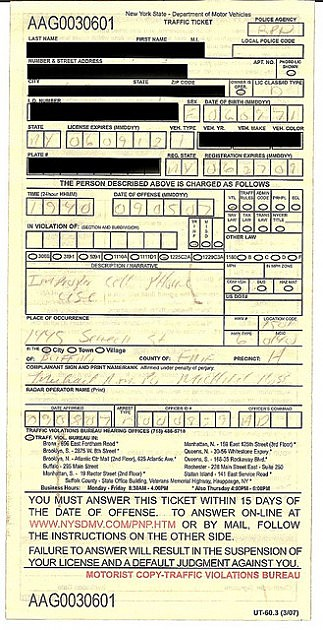 Traffic Ticket for annoying public behavior