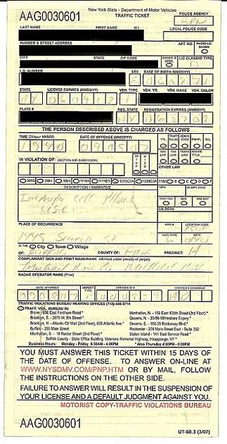 Traffic Ticket for annoying public behavior