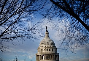 U.S. Capitol Building's dome