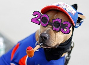 A dog dressed in a Mets uniform is seen prior to the opening day game between the New York Mets and the San Diego Padres at Citi Field