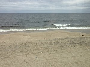 ocean in Long Branch