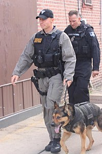 State Police K-9 dog at Trenton hostage standoff