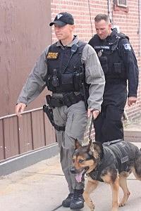 State Police K-9 dog at Trenton hostage standoff
