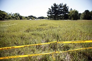 Crime scene tape marks the area beyond which news media may not go where FBI agents search a field (background) outside Detroit for the alleged remains of former Teamsters' union president Jimmy Hoffa