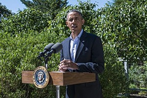 President Barack Obama delivers a statement on Egypt at his vacation home  in Chilmark, Martha's Vineyard, Massachusetts
