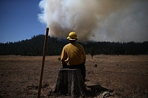 U.S. Fish and Wildlife Service firefighter Corey Adams sits on a tree stump as he monitors the Rim Fire
