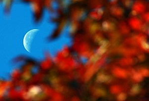 What does a blue moon really mean?