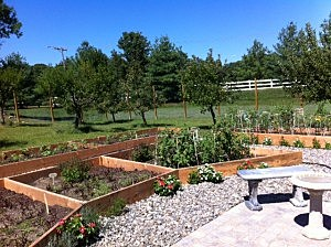 Garden donated by Lowes