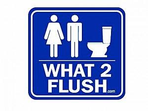 What 2 Flush