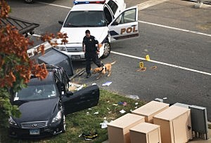 A police officer checks out a car on grass with his canine