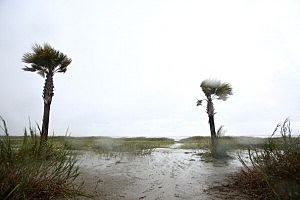 The effects of Tropical Storm Karen in Grand Isle, Louisiana