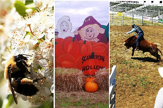 Best Things to Do in Salem County, NJ