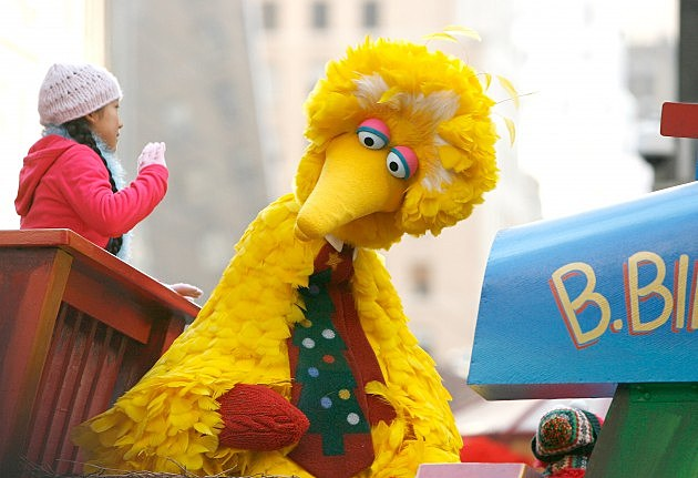 Big Bird Announces that he is transgendered