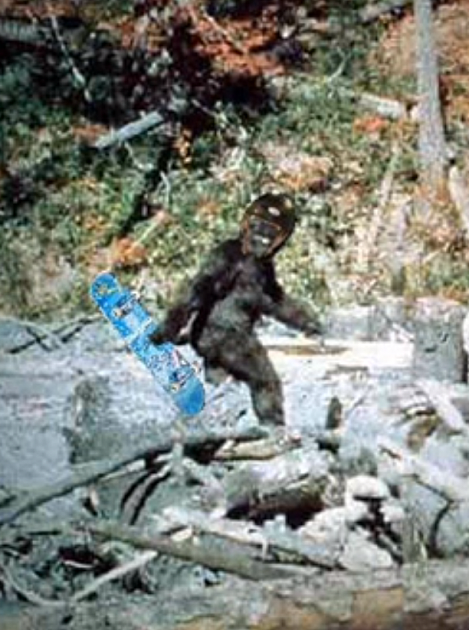 Photo of sasquatch with a skateboard
