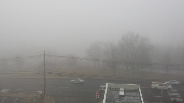 Fog in Huddy Park in Toms River