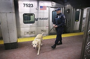 TSA K-9 Teams Provide Extra Security At Penn Station Ahead Of Super Bowl