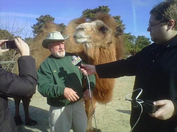 Zoo Director John Bergman with Princess and reporter Jason Allentoff
