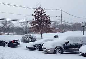 Snow covered cars in Manalapan