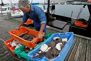 Baltic Sea Fishermen Face Uncertain Future