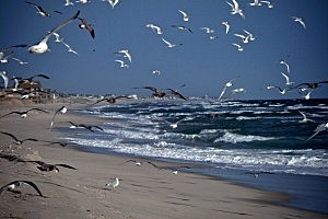 The Northeast Coast Marks One Year Anniversary Of Hurricane Sandy
