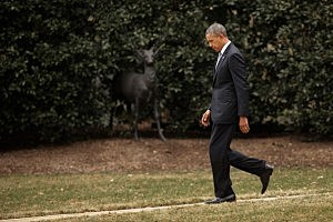 President Obama Departs The White House En Route To New York