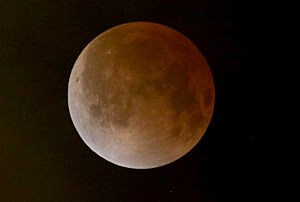 The moon is seen during a total lunar eclipse on April 15, 2014 in Miami, Florida