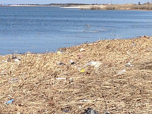 dirty beach - Sandy Hook