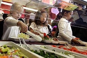Healthy Lunch In Schools Program