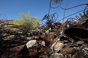 Environmentalists Challenge Salton Sea Development Project