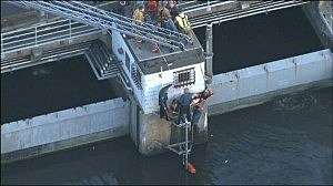 New Jersey State Police rescue a truck driver from Overpeck Creek after his truck went off the New Jersey Turnpike