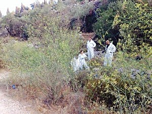 Police forensics examining body found in the Jerusalem forest on Thursday.