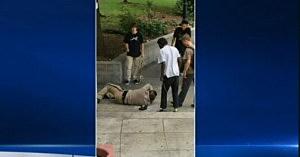 Screen shot of video showing a park ranger at Philadelphia's Love Park beaten by skateboarders