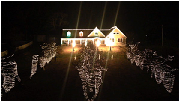 Christmas Light Show charity returns to Wall for 2016